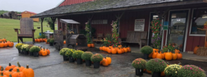 For pumpkins, apples, local honey and more, get in on the fall fun at Schweizer Orchards in St. Joseph, Missouri.