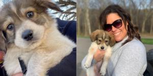 Blue Springs, Missouri, pet rescue Pawportunities helped SJC Marketing's Jessica Stewart find her new fur baby.